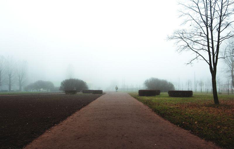Деревья, Дорога, Туман, Улица, Фото, Человек ***photo preview