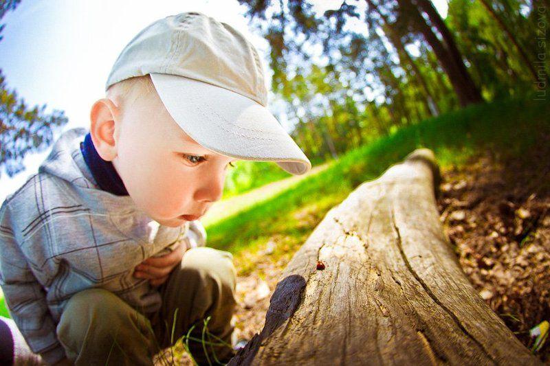мальчик,природа познавая мирphoto preview