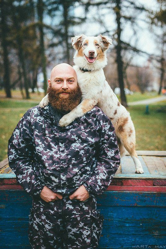 аусси, австралийская овчарка, борода, рыжие Семейный портретphoto preview