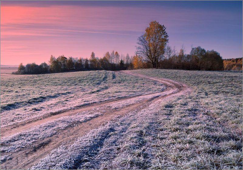Первые заморозки...photo preview