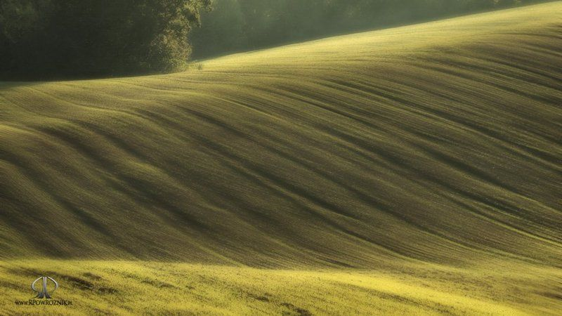Fields, Landscape, Light, Rpowroznik, Scenery fields...photo preview