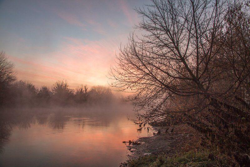Утро у реки. Ноябрьphoto preview