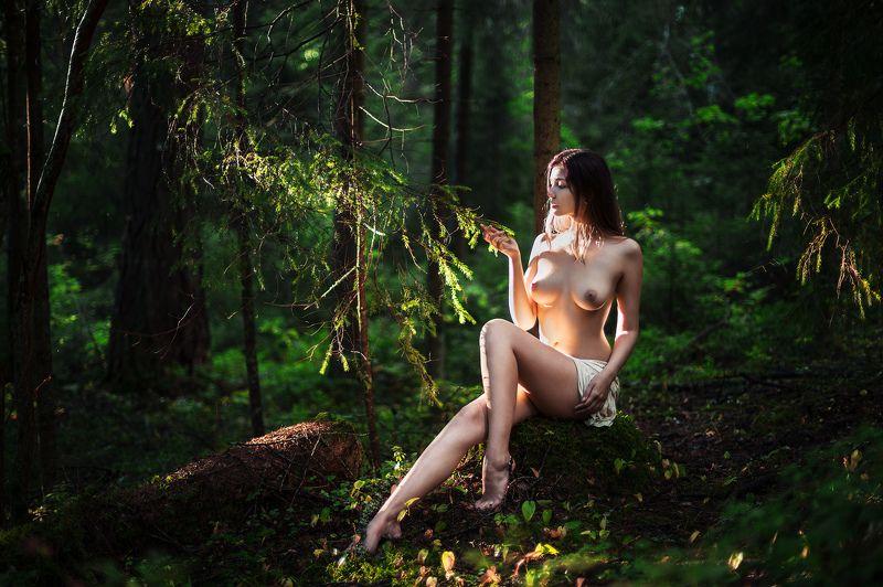 Девушка лес свет тени Оляphoto preview