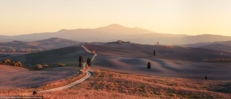 Countryside, Italy, Landscape, Panorama, Sunset, Tuscany, Италия, Панорама, Пейзаж, Тоскана Залитые солнцем поляphoto preview