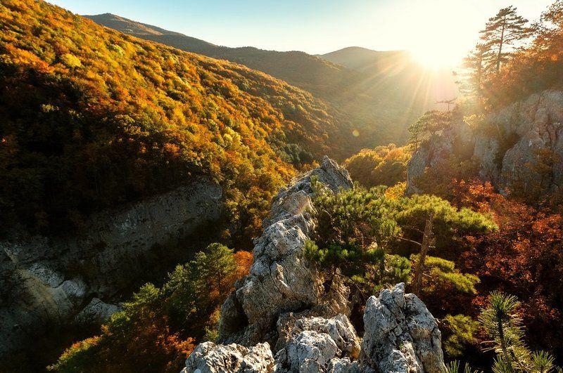 осень, горы, лес, солнце, пейзаж, landscape,wood, nature, autumn, Crimea Крымский каньонphoto preview