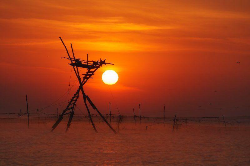 Небо, Рассвет, Сети, Солнце, Черное море Каравыphoto preview