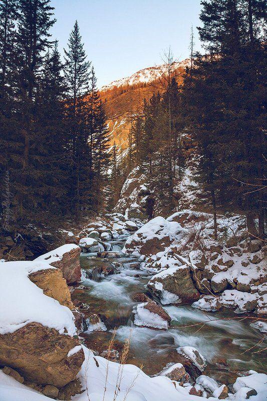 горный, Алтай, река, Чибитка, Акташ, М52, Чуйский тракт, Чибиткаphoto preview
