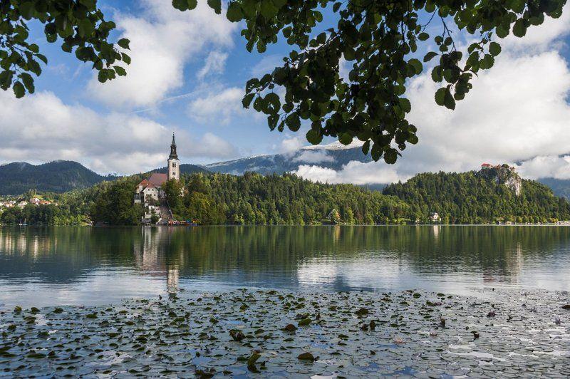 блед, замок, озеро, озеро блед, остров, открытка, словения, храм, церковь Блед открыточныйphoto preview