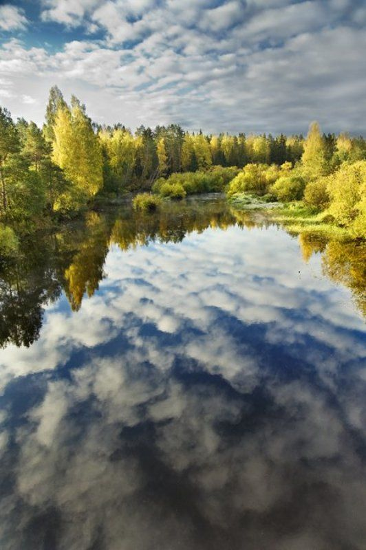облака,небо,отражение,осень,цвета,вода,река,листва,деревья Краски уходящей осениphoto preview