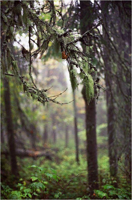 хребет, малый ямантау, южный урал, башкирия Плакала осеньphoto preview