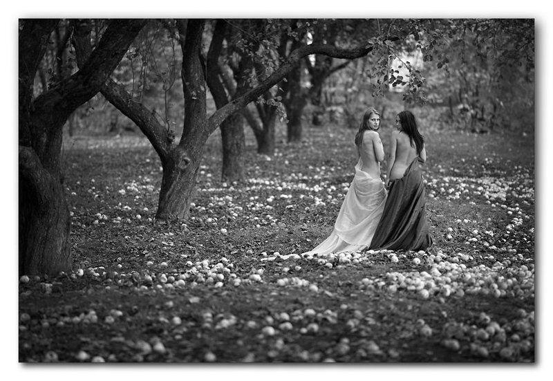осень, ню, яблоневый сад, яблоки, девушки Яблоневый сад...photo preview
