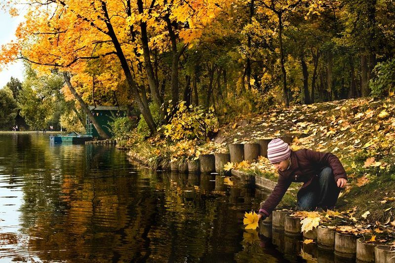 autumn, leaf, forest, water, lake, voyage Going for the last voyagephoto preview