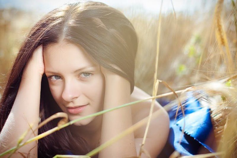 summer,dasha .fields of goldphoto preview