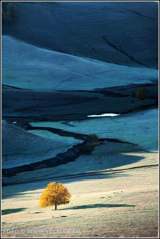 контраст,чатыртау,осень,salman, зима идетphoto preview