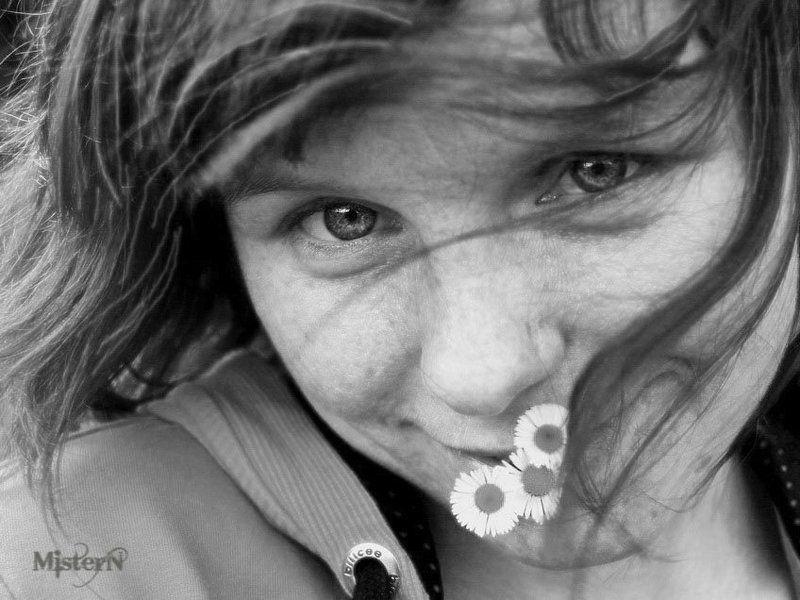 mistren,ветер,девушка,ромашки,нежный взгляд ветерphoto preview