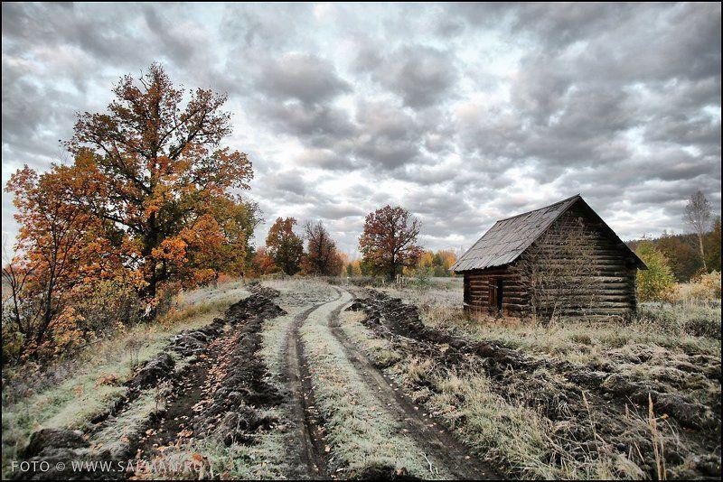 осень,соколки, И снова осень...photo preview
