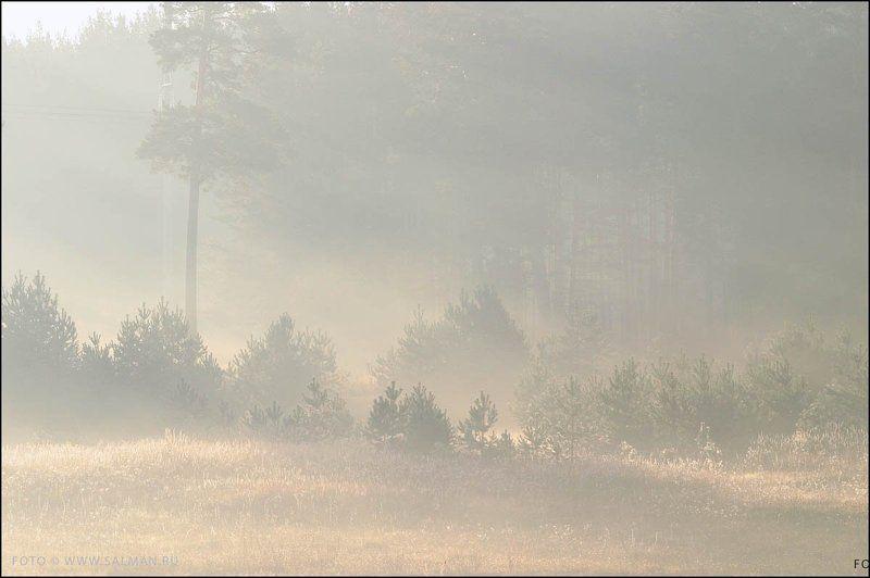 осень,дымка, дымка,photo preview