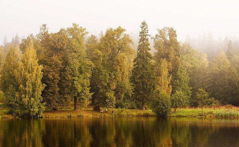 озеро, парк, осень Осенние мотивыphoto preview