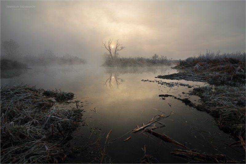 утро, туман, река, солнце, дерево, отражения, рассвет, мистика, сказка, волшебство Туман на рекеphoto preview