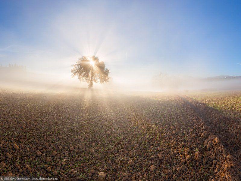 Италия, Пейзаж, Природа, Рассвет, Тоскана Утренний светphoto preview