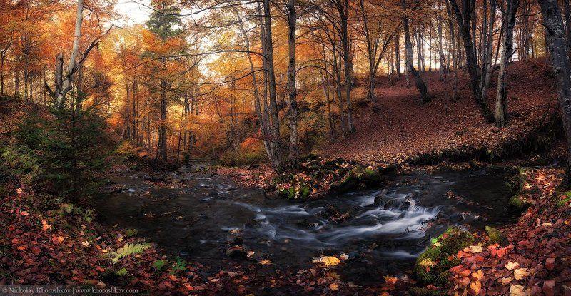 Карпаты, Лес, Осень, Панорама, Украина Осень у реки притаилась...photo preview