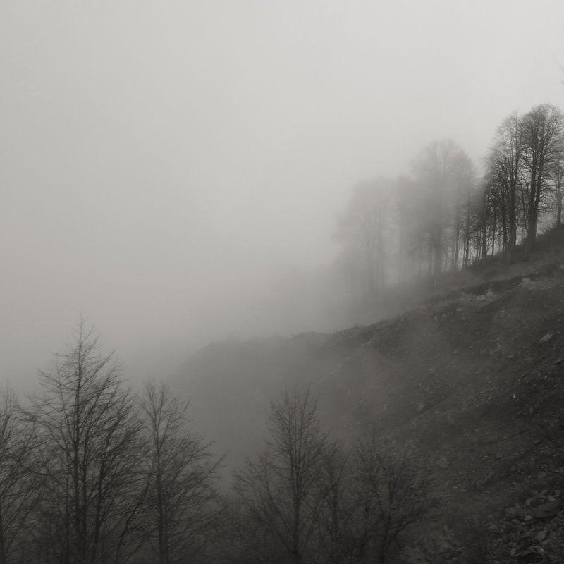 Тишинаphoto preview