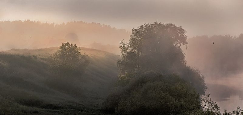 Туман на Ореphoto preview