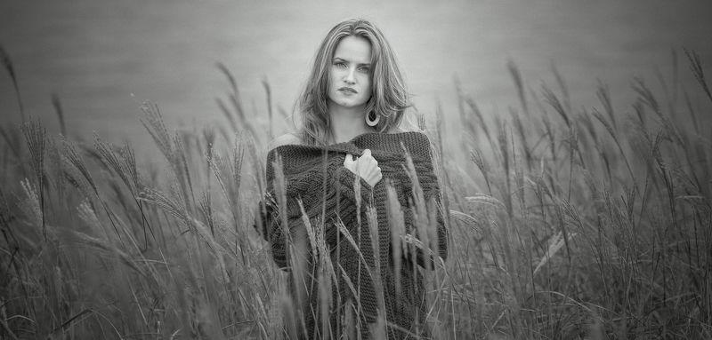 girl  in the field  russian  federation  spikelets  волосы  девушки  красивый  красота  портрет  серьги  Кардиган Marinaphoto preview