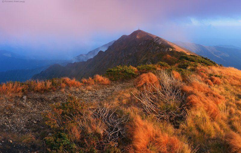 Горы, Карпаты, Мармаросы, Осень, Поп иван ***photo preview