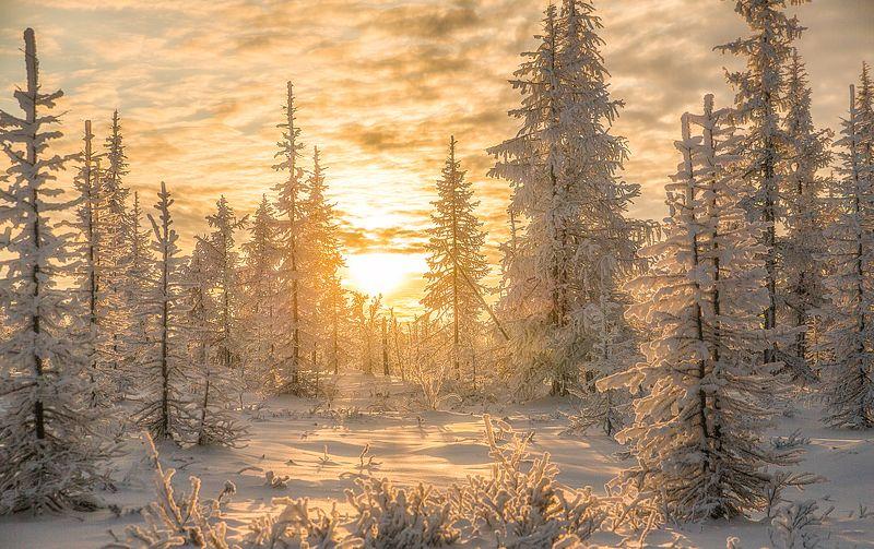 Закат, Зима, Ноябрь, Снег ****photo preview