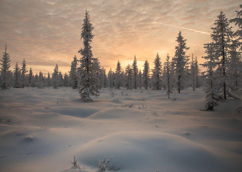 Закат, Новый уренгой, Ноябрь, Ямал ***photo preview