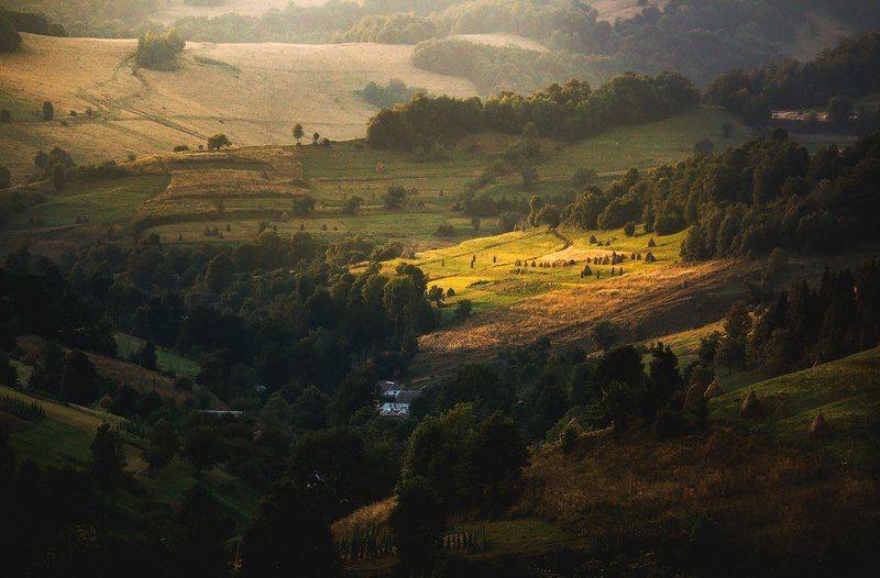 canon , canon70d, landscape, landscapes, carpathian, mountain, light, sun, neture, green, summer Лучик теплаphoto preview
