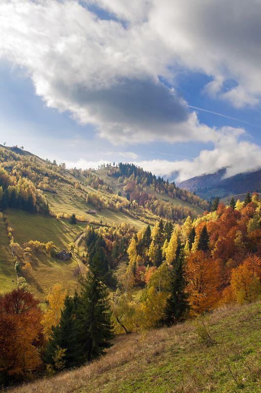 Andrada Nistor, Romania