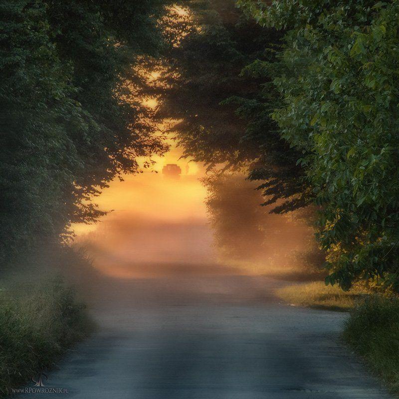 rpowroznik, sunset, landscape, scenery, light sunset...photo preview
