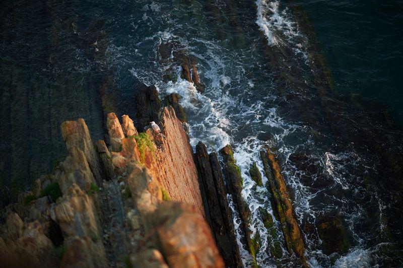 туапсе, черное море, скалы, ночь, закат Скала Киселёваphoto preview