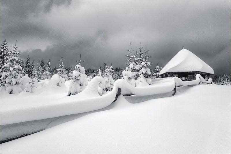 первый, снег первый снегphoto preview
