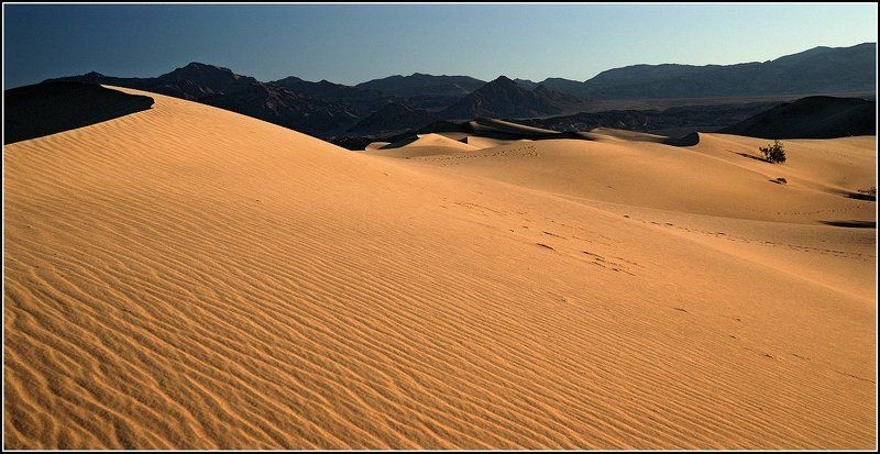 Долгая дорога в дюнах(3)photo preview