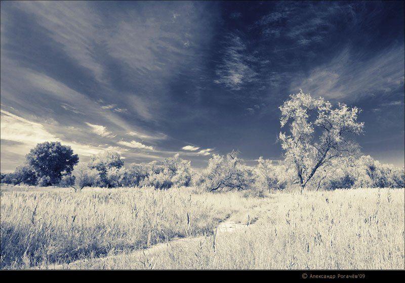 анапа,осень,пейзаж Пейзаж в альтернативных тонах. v2photo preview