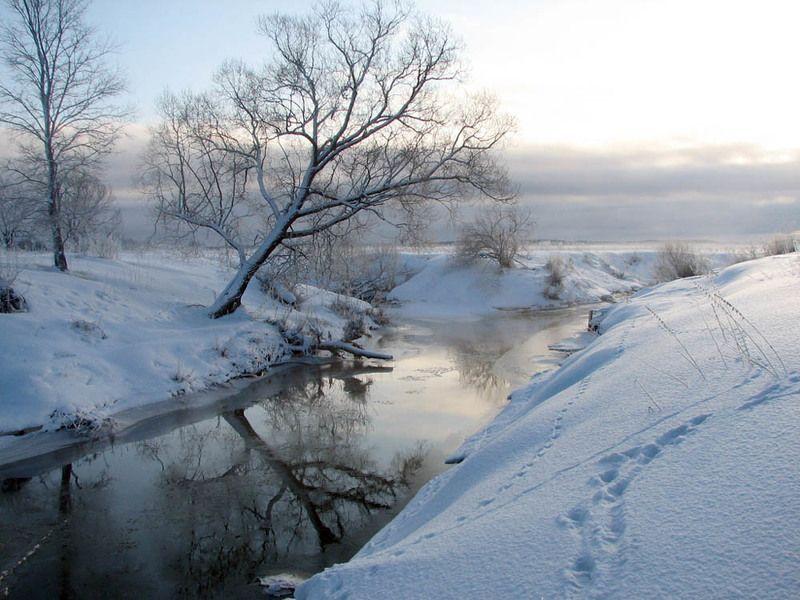 утро, зима, снег, река, солнце, дерево, восход Мартовский восходphoto preview