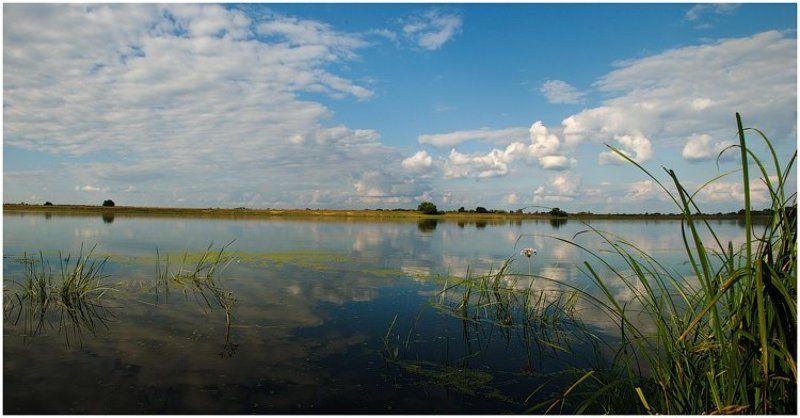 река, тишина Здесь тишь, да гладь..photo preview