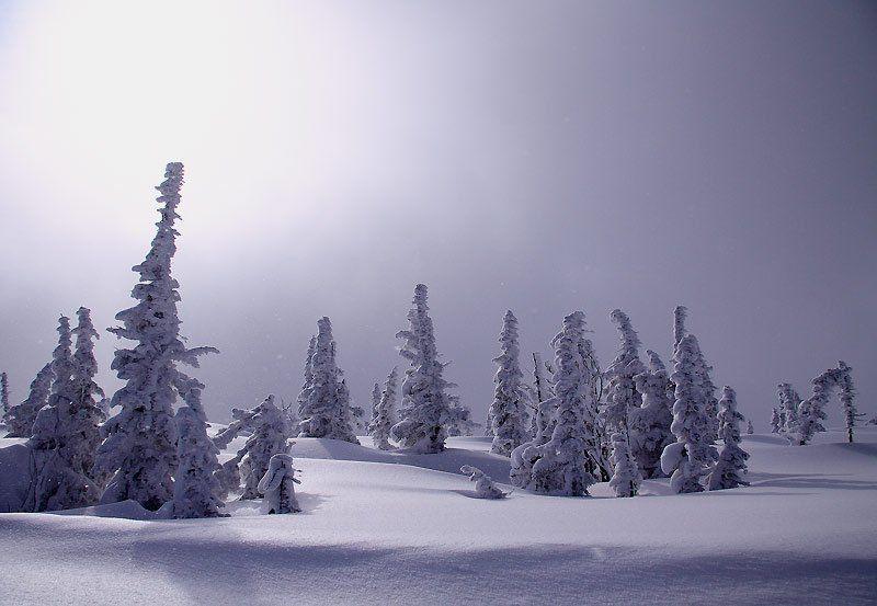 шерегеш, зима в облакахphoto preview