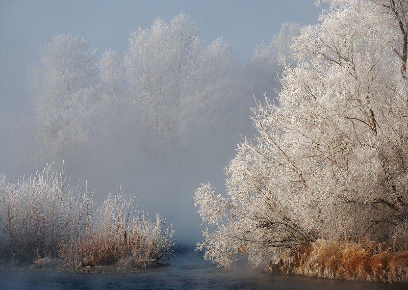 иртыш,иней,мороз Первые заморозкиphoto preview