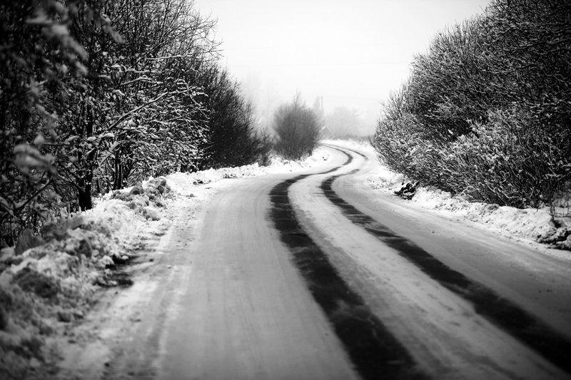 А дорога серою лентою вьетсяphoto preview