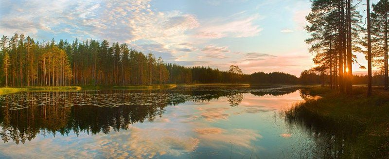 на лесном озереphoto preview
