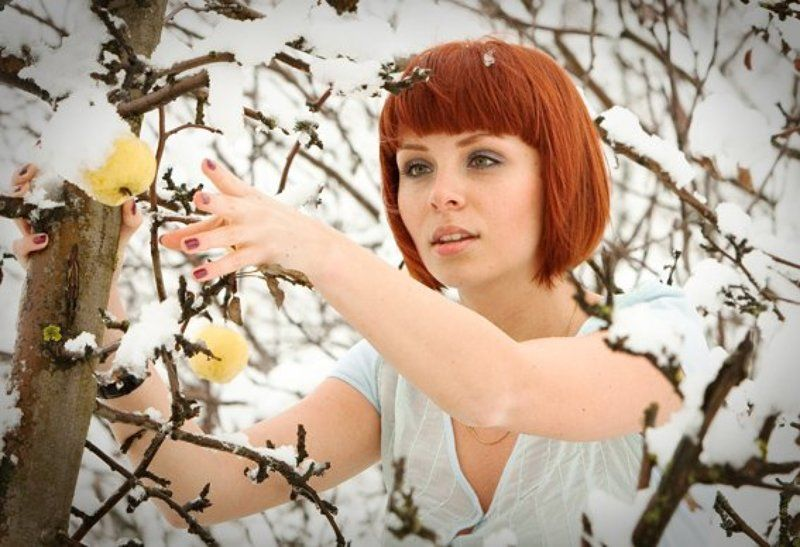 яблоки, зима пора собирать урожай!photo preview