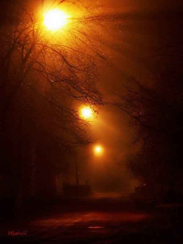 ночные светилаphoto preview
