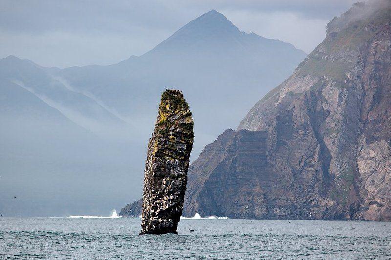 камчатка, тихий океан Перстphoto preview