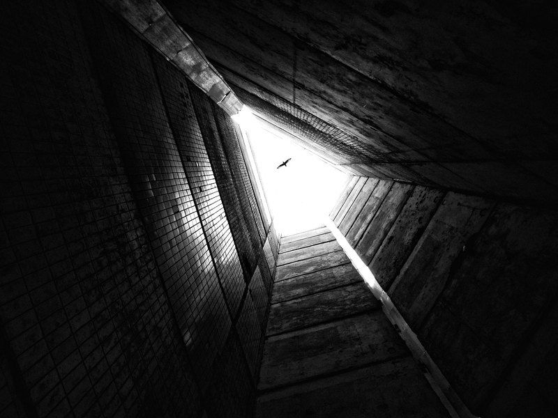 Пролетая над гнездом человекаphoto preview