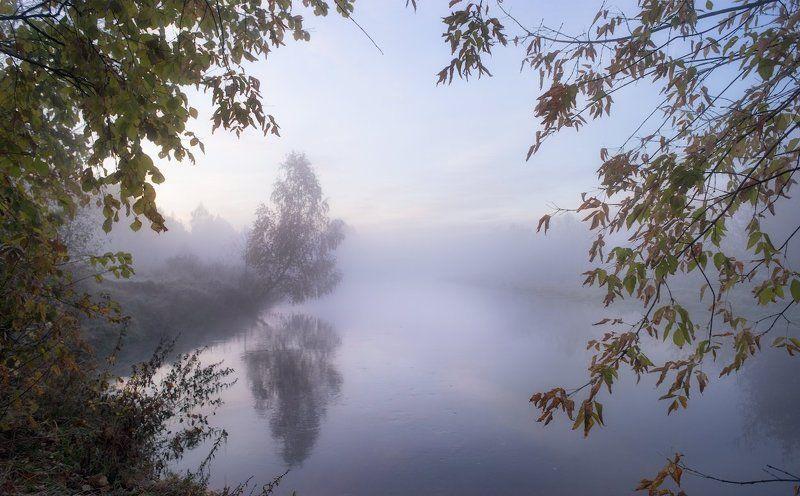 Дерево, Клязьма, Красота, Осень, Река, Россия, Туман В преддверии холодной осени...photo preview