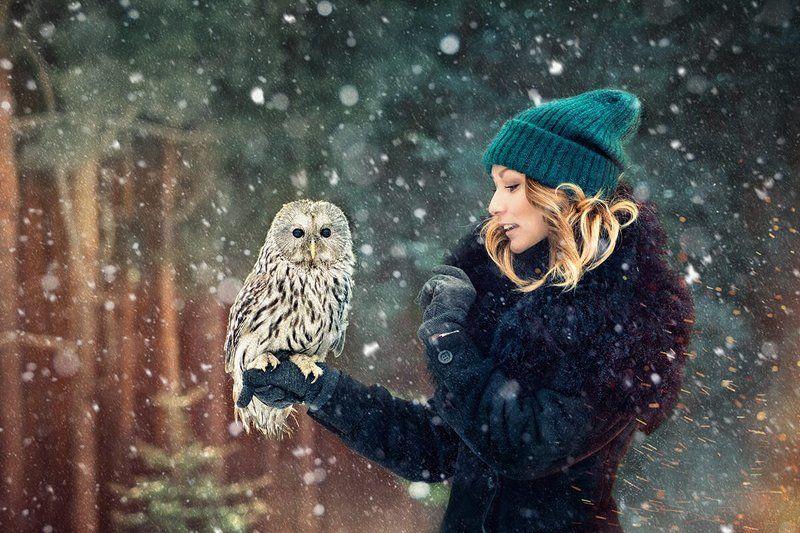Девушка, лес, сова, снег, зима 2015photo preview